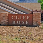 Cliff Rose Homes For Sale