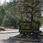 Forest Trails Homes For Sale